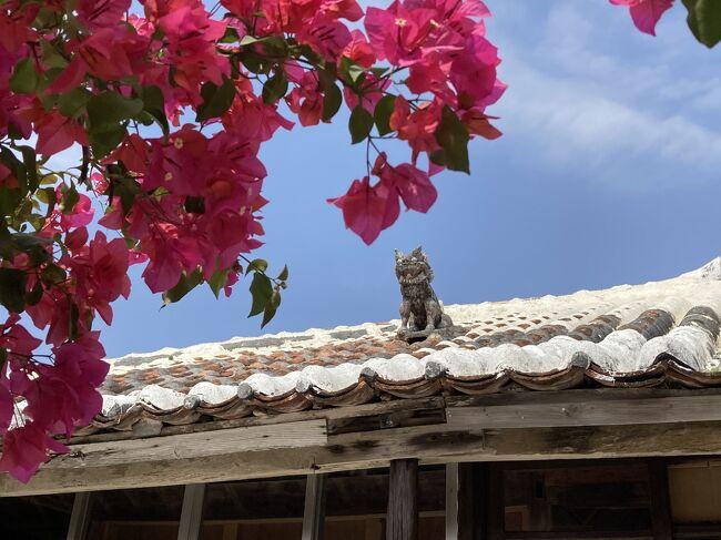 前から行ってみたいと思っていた竹富島に日帰りで行きます!<br />レンタサイクルでビーチを周ってから、伝統家屋の街並みを歩いてみます。<br /> <br />最後に、この旅行で買った物も紹介します。<br /><br /><スケジュール><br />3月14日(日) 成田空港→石垣島→小浜島 (小浜島泊)<br />3月15日(月) 石垣島に戻り、川平湾観光 (石垣島泊)<br />3月16日(火) シュノーケリング1日ツアー参加 (石垣島泊)<br />3月17日(水) 竹富島観光 (石垣島泊)★この旅行記★<br />3月18日(木) 石垣島→成田空港 ★この旅行記★