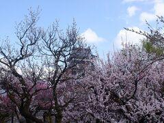 神戸発FDAで行く信州松本と播州城巡り 前編