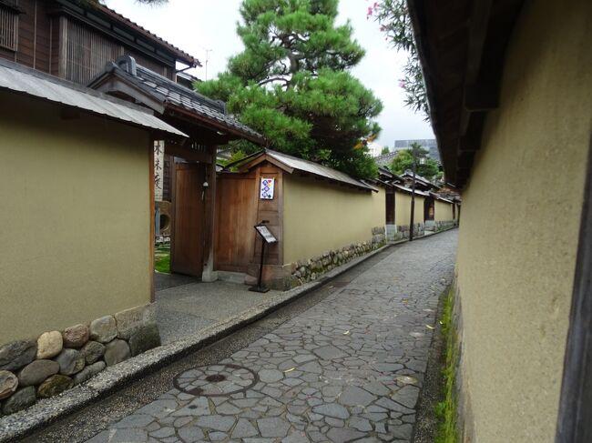 前回は、武家屋敷周辺をひたすら南下して歩いてきました。<br />そろそろ疲れてきましたが、まだしっかりと歩きますよー!