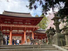 '21.03 行き当たりばったりで奈良に一人旅