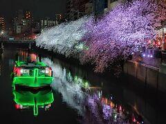 2021.3 横浜トリップ☆大岡川の桜~酔来軒~みなとみらい☆