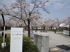 大阪 さくら広場