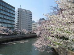 2021年東京・お花見②