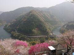高知県 仁淀川町 寺村 花の里公園とひょうたん桜