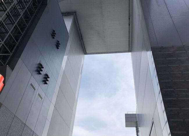 京都駅ビルは大きな建造物ですが、その割に改札内と自由通路2本、ホテルグランヴィア京都のごく一部、地下の一部のお店とJR京都伊勢丹以外の場所に行ったことがありませんでした。以前に知人と屋上呑みをしたことがきっかけで、今まで知らなかった場所があることを知り、いつか探検しようと考えていました。<br />実際に行ってみて、改札内には入らなくても誰でもが自由に行け、のんびり過ごせるスペースがこんなにあることが驚きです。市バスの定期があるので、この日は交通費もゼロ。ついに経費をまったくかけない旅行記に手を染めてしまったのでした。