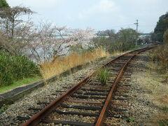 悲しい肥薩線の今、球磨川沿いの桜を求めて