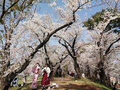 2021年 岡崎桜まつりに行ってきました