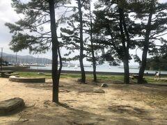 三日続けて孫と福岡市内散策、本日は歩いて小戸公園まで!