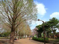 横山公園(神奈川県相模原市)へ・・・