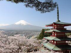 伊豆・箱根、富士山巡りの旅(6日目)