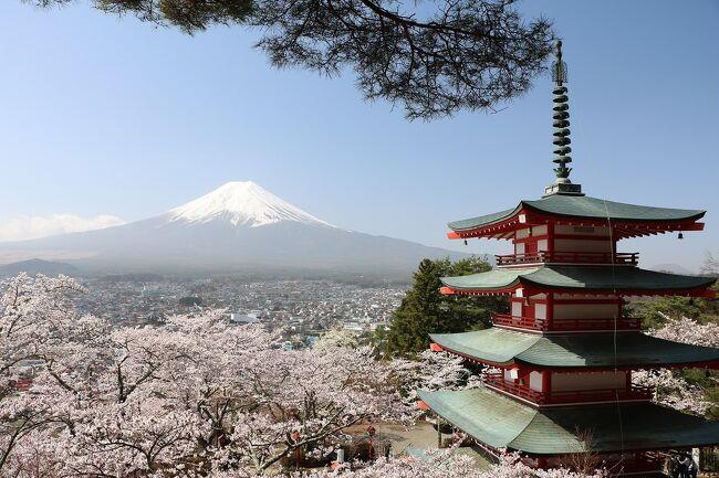 富士山と桜の景色が見たくて今回の旅行を年初に計画。<br />当初の計画では、3月28日から3泊4日の予定でしたが、週間天気を見ると何れも天気が悪そうなので急遽宿を追加予約して5泊6日に変更しました。<br />新型コロナウイルス緊急事態宣言が解除されたものの、感染リスクを少しでも下げるため、今回もマイカーで出かけることにしました。<br /><br />今回の旅程は、<br />3月26日(金)自宅から車で日本平、富士山本宮浅間大社と大石寺の桜を鑑賞後、大瀬崎の民宿泊<br />3月27日(土)西伊豆の煌めきの丘・恋人岬・黄金崎、堂ヶ島、松崎町観光後、沼津インターグランドホテル泊<br />3月28日(日)静岡県富士山世界遺産センター、沼津港、元箱根を観光後、エクシブ箱根離宮泊<br />3月29日(月)大涌谷、元箱根、三嶋大社、修善寺観光後、伊豆マリオットホテル修善寺泊<br />3月30日(火)富士五湖(田貫湖・本栖湖・精進湖・西湖・河口湖・山中湖)観光後、富士マリオットホテル山中湖泊<br />3月31日(水)新倉山浅間公園、富士五湖観光後に帰宅<br /><br />週間天気予報ではあまり天気が良くないとのことでしたが、良い方に外れて比較的天候に恵まれた旅行となりました。<br />ただ一番期待していた最終の富士五湖巡りは天気がよいものの、黄砂の影響で霞んだ富士山になったのがちょっと残念でした。<br />とは言うものの、今年の桜は開花が早く、とてもきれいな桜の花見ができました。<br />特に新倉山浅間公園の桜は、観光ポスターのようにとても見事でした。<br />今回は、旅行最終日の新倉山浅間公園と富士五湖を回って帰宅するまでを紹介します。<br />新倉山浅間公園は外人さんに人気のスポットですが、この日は黄砂の影響もほとんどなく、きれいな富士山と桜の花を見ることが出来ました。<br />観光ポスターと同じ景色が見られて良かったです。