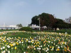 横浜公園(横浜球場)から山下公園界隈の散策