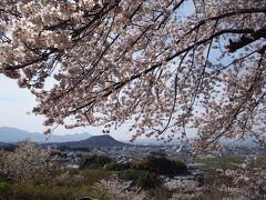 2年ぶり13回目の奈良旅は、1泊2日で桜めぐり♪② 飛鳥 編