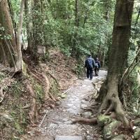 熊野古道と本宮大社