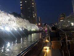桜クルーズ 大岡川の花筏(はないかだ)