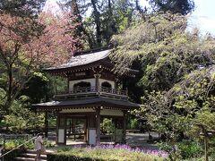 鎌倉散歩 東慶寺から浄智寺へ行きました。