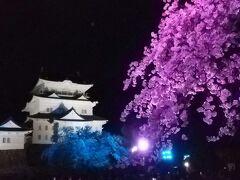 秦野、弘法山から小田急で小田原城ライトアップを見に行く