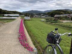 春の飛鳥の地を自転車で 巡る