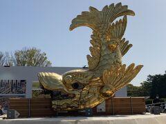 名古屋城金鯱展と満開の桜&古民家レストラン