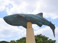 巡るJapan 沖縄 美ら海水族館