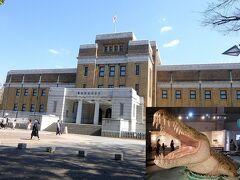上野公園に行き,国立科学博物館で思いがけず地球のハンター特別展に入場することになった