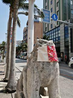 花粉対策in沖縄