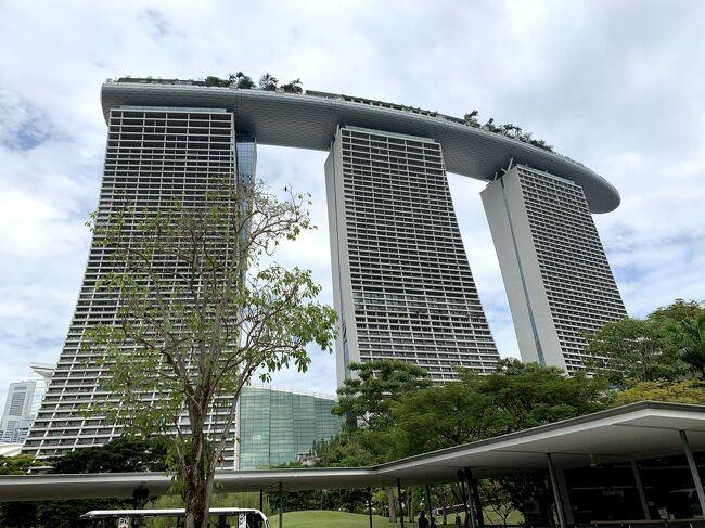 出張でシンガポールへ<br />シンガポールへ行くのは、10年ぶり。前回も出張。<br />今回の出張は、拘束される時間も短いので、少しだけど街歩きする時間もとれました。<br />今回の宿泊先は、マリーナベイサンズ。10年前の出張では、まだ開業前でした。<br /><br />●行程<br />2019/10/21 東京~シンガポール<br />2019/10/23 シンガポール~東京<br /><br />●フライト<br />21OCT19 NH843 D HND SIN 0040 0640<br />23OCT19 NH844 D SIN HND 2210 0630<br />#Marina Bay Sands Sigaporeのホームページかホテルと航空チケットをセットで予約<br /><br />●宿泊<br />2019/10/21-22 Marina Bay Sands Sigapore 2泊
