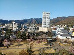 山梨2021桜 【4】舞鶴城公園