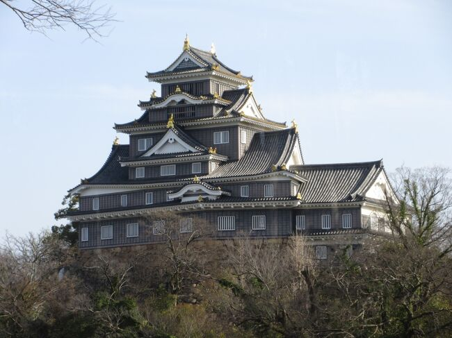 全国お城巡りの第2弾は岡山城です。美しいですね。青空に金のシャチが輝いています。岡山駅近くのビジネスホテルに泊まり、ホテルから歩いて岡山城まで行ってきました。<br /><br />注:岡山城天守閣は大規模改修のため、2021年6月1日から休館し、2022年11月にオープンする予定です。