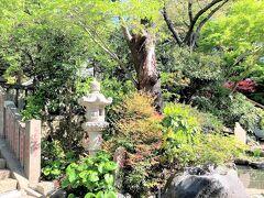 高来神社からウグイスの鳴き声を聴いて山野草を眺めながらのトレッキング