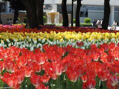 ガーデンネックレス横浜2021:チューリップでリフレッシュ!