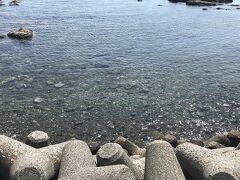 葉山女子旅きっぷで春のお散歩~お出かけ再開の洗礼~