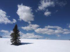 春のVailでスキー
