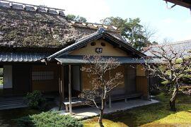 トンネルを抜けると*そこは奈良でした【奈良公園・慈光院・音の花温泉(音の花亭)】