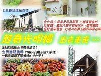 台湾に居たら、行っていた苗栗旅遊