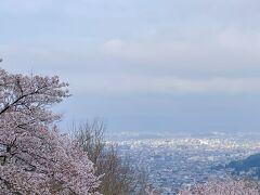ANDOHOTEL奈良若草山に宿泊、桜を愛でる春旅。
