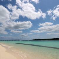 初めての宮古島 Active2+Luxury2=4泊5日の旅①ANA プレミアムクラス(往路だけ-笑)☆島唄居酒屋「ぶんみゃあ」☆ダイビング