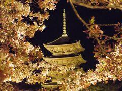 2021年4月 京都と奈良でお花見(1):京都の変なホテルと東寺夜桜ライトアップ/夜間特別拝観