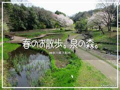 泉の森公園