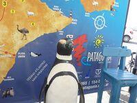 南米&南極海クルーズ★プエルト・マドリンからブエノスアイレスへそして帰国。