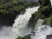 2019 水量少なめイグアスの滝 アルゼンチン編
