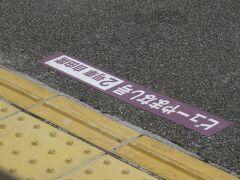 2021MAR「どこでも1万円プラン神戸一人旅」(8_青春18きっぷで松本より帰宅)