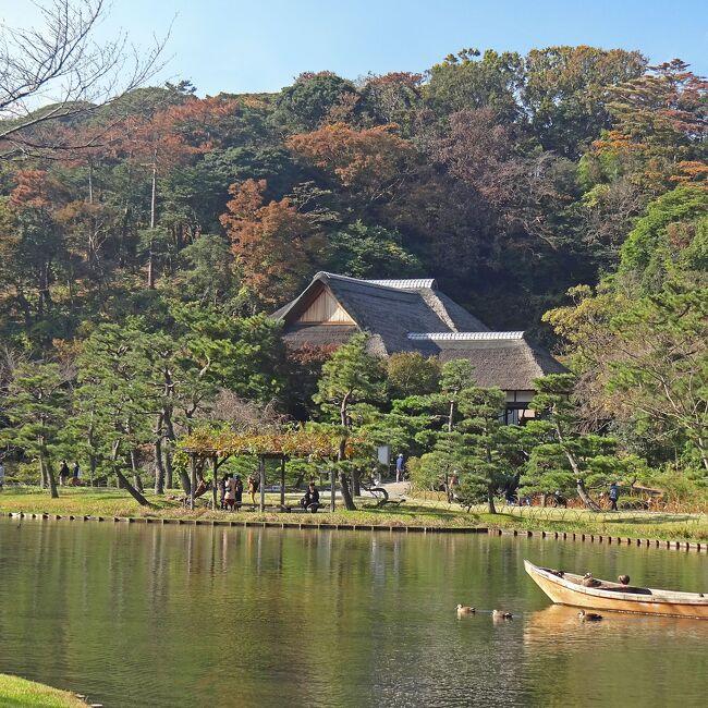 雲一つない快晴でしたので、レンタカーで横浜の三渓園とその南にある本牧市民公園内の上海横浜友好園を見学してきました。<br /><br />本旅行記は「晩秋の横浜 三渓園 上海横浜友好園 I」(https://4travel.jp/travelogue/11665575)の続きです。<br />三渓園と上海横浜友好園の概要につきましては前報をご覧ください。<br />
