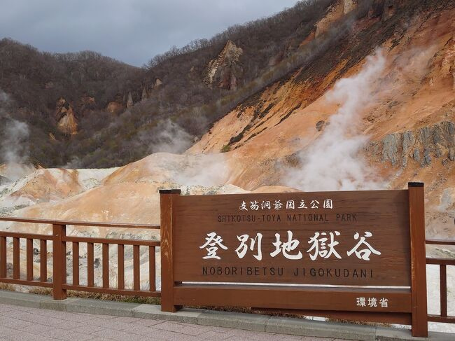 今年の2021年GWのメイン旅行記です。コロナ禍において日本社会が「マスク着用!」「自粛!」「感染者=陽性者」というように、社会全体が非常に殺伐として息苦しい世の中、はっきり言ってストレスフルでございます!自粛しろなんて言ってるけど、もう限界!せっかくのGWは和みに登別の温泉でまったりとしてきます!<br /><br /> あとは卑しく?もフォートラベルポイントを手に入れるべく実際にいろいろ回ってきます!さっぽろにも訪れたので、そちらの旅行記も見てくださいね☆<br /><br /> <br /><br />・