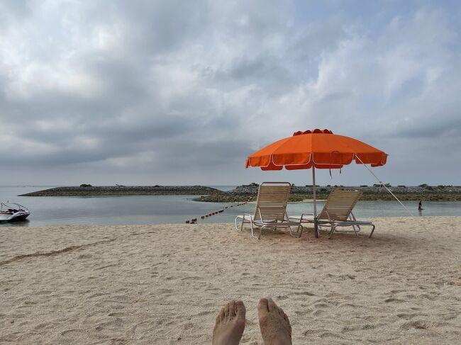 元沖縄在住の友人が沖縄に連れて行ってくれるという話が出てから数ヶ月。何度もスケジュール調整をして、ようやく実現することができました。<br /><br />1日目 美ら海水族館、ステーキジャム、アメリカンビリッジ<br />2日目 恩納村周辺(メガジップ、青の洞窟、なかむらそば、万座毛)<br />3日目 沖縄南部(国際通り、牧志市場、中本鮮魚店、知念岬、瀬長島ウミカジテラス)<br /><br />沖縄2日目の日程<br />8:45 ホテル出発<br />9:00 ファミマで朝ごはん買い出し<br />9:30 シェラトン沖縄サンマリーナリゾート<br />   Mega Zipとビーチでまったり<br />11:30 ホテル出発<br />12:00 青の洞窟ダイビング<br />15:30 なかむらそば<br />16:10 お菓子御殿<br />16:40 万座毛<br />17:15 おんなの駅なかゆくい<br />18:50 アメリカンビレッジ<br />21:00 ホテル到着<br /><br />3日目に続く<br />https://ssl.4travel.jp/tcs/t/editalbum/edit/11688437/