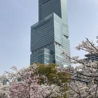 5・7歳児連れ、春休み第二弾は大阪でホテルステイ:大阪マリオット都ホテル編