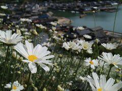 除虫菊の里に行ってミタ。しまなみ海道 因島