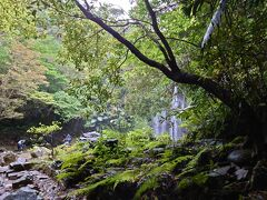 沖縄旅行 4泊5日(3) ター滝~帰路