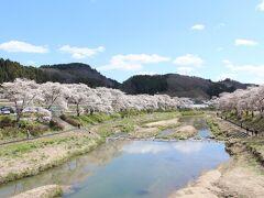 名所がたくさん、福島の桜を見に行ってみました。1日目
