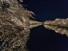 松前、弘前の桜と八幡平